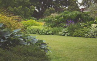 Einen Garten anlegen